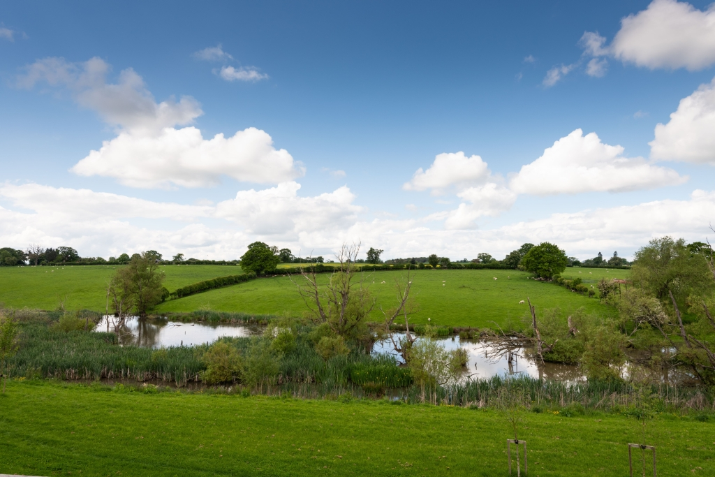 Bluebell Close views