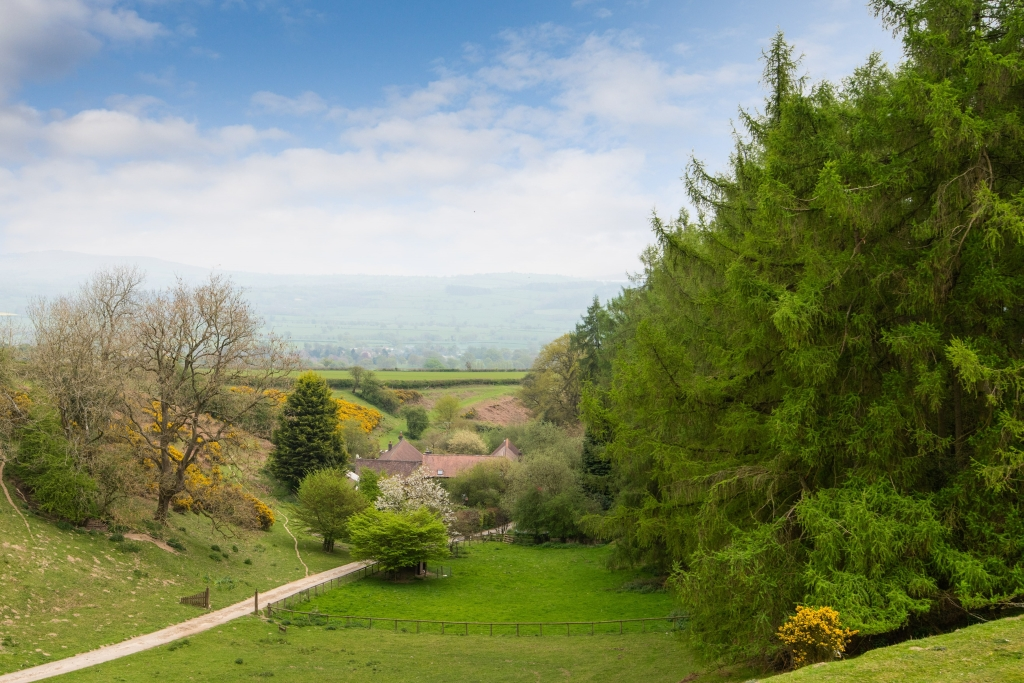 Goosefoot Barn main1