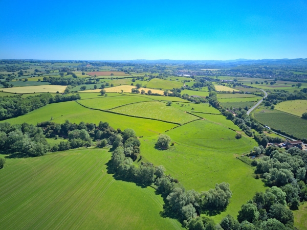 Land for investment amenity and growth