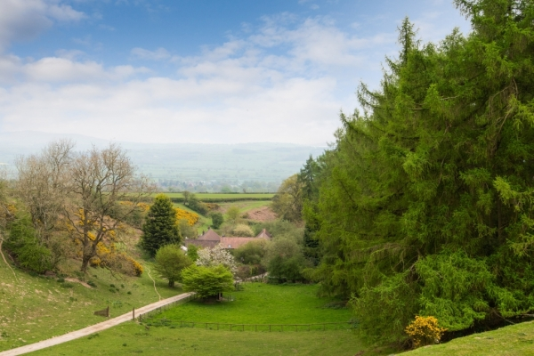 Five Properties In Five Acres – Fine Lifestyle