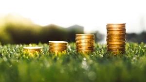 Accounts & Bookkeeping