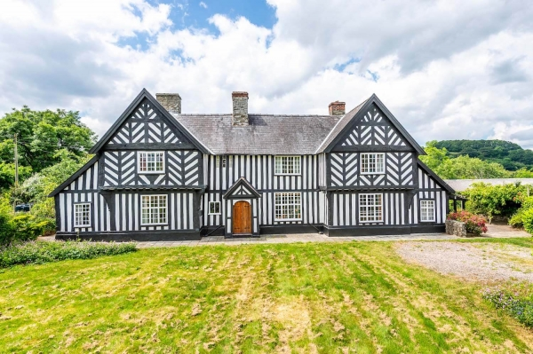 Jacobean roots with grand fizz