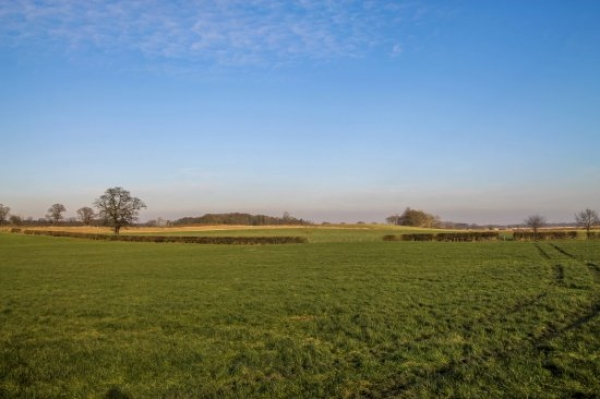 FBT on 300 acres of prime land at Newport, Shropshire