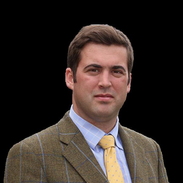 Charlie Fitzherbert-Brockholes BSc (Hons) MRICS